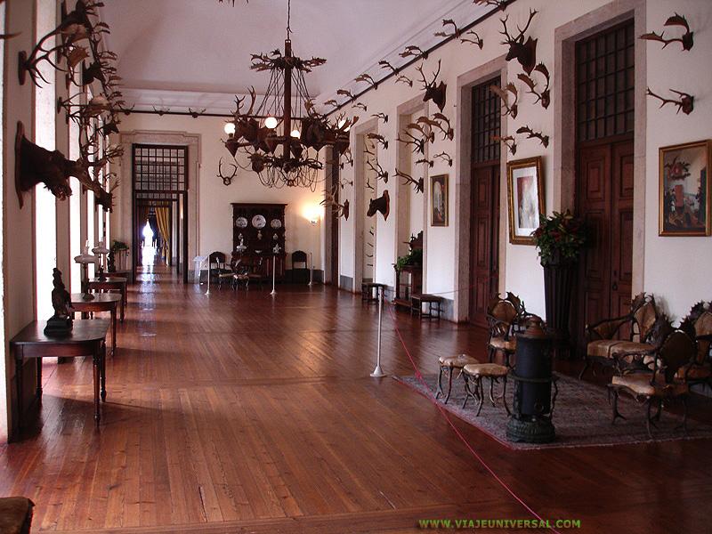 Fotografia sala de caza del palacio nacional de mafra for Trofeos caza decoracion