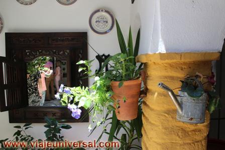 Blog del viaje a la fiesta de los patios de c rdoba espa a for Ver patios decorados